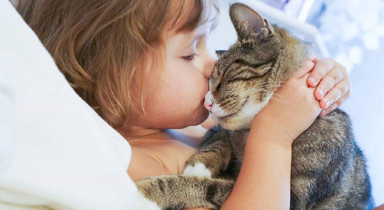 Лишай у дітей: симптоми та лікування Міська дитяча лікарня №5 детская больница Запорожье