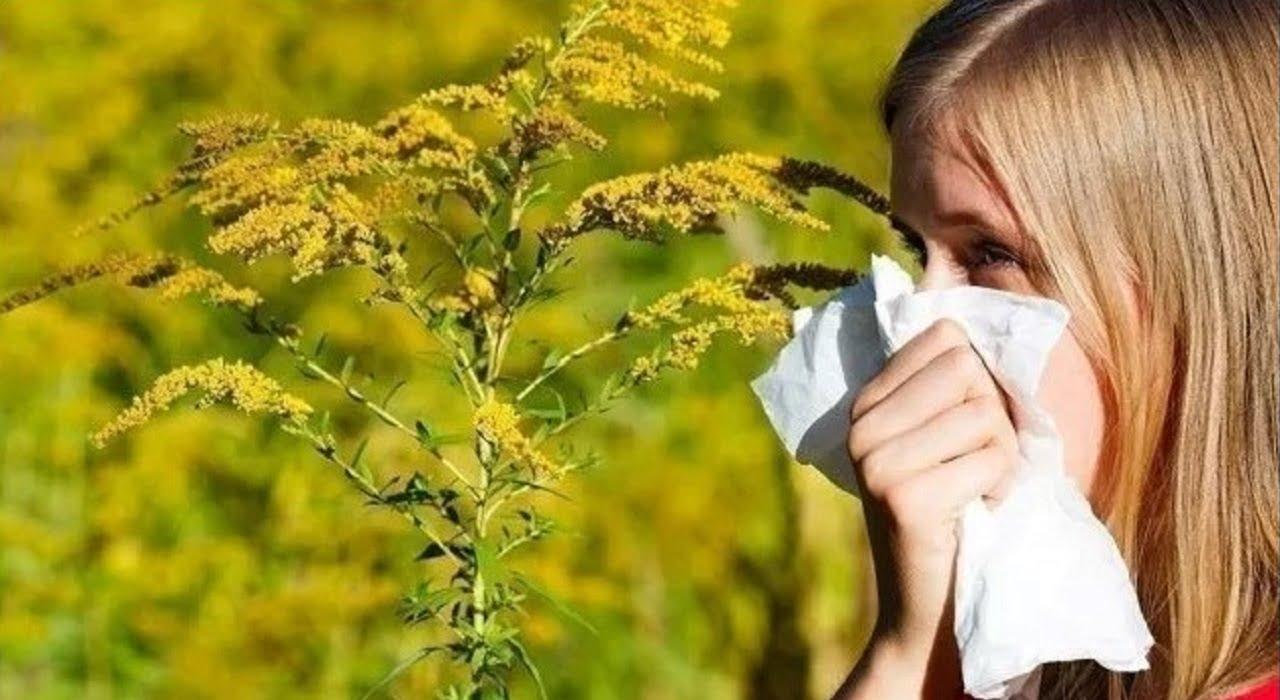 Що варто знати про алергію Міська дитяча лікарня №5 детская больница Запорожье